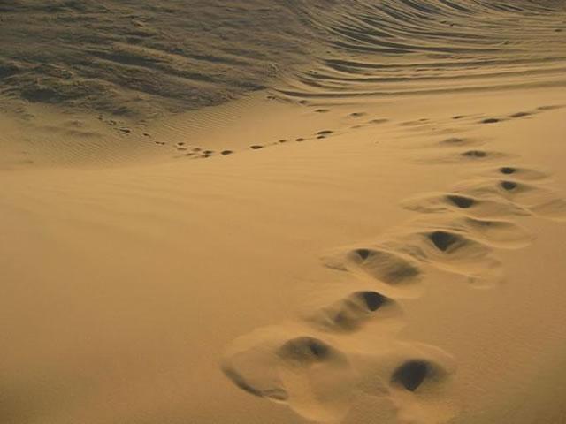 Jejak Penyebrangan Nabi Musa A.S